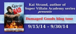 Damaged Goods Tour Banner(1)